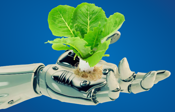 robotic arm with lettuce